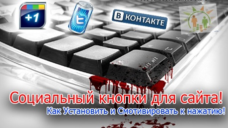Как установить на блог WordPress кнопки социальных сетей